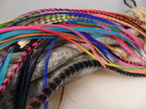 Mixed Colors 5 Feathers